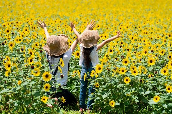 夏にぴったりな幼児向けの製作遊び。保育に使える花火や風鈴などのアイデア