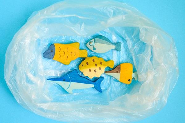 ビニール袋と魚のおもちゃ