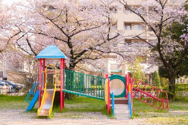 春の保育園の写真
