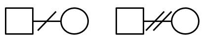 ジェノグラムの書き方図