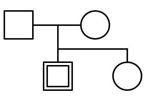 ジェノグラム 書き方