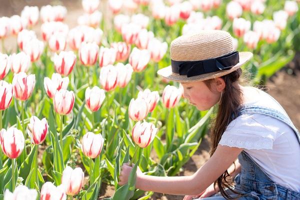 【4月】0歳児、1歳児、2歳児向けの製作アイデア。乳児が楽しめるイースターや桜などの作り方