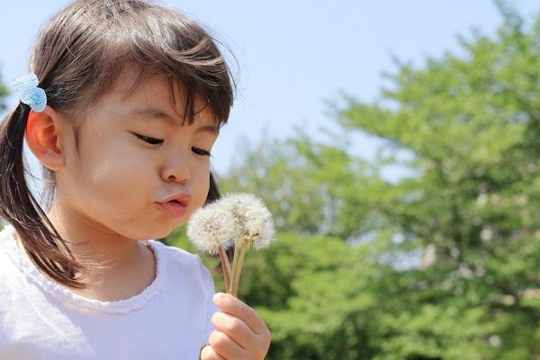 【4月】3歳児・4歳児・5歳児向けの製作アイデア。桜やチューリップの作り方