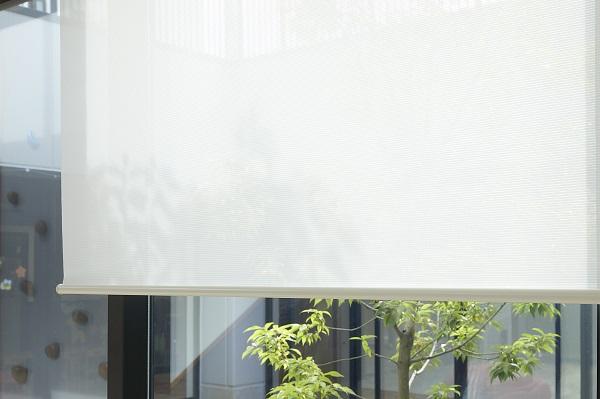 シースルー生地は中庭に降り注ぐ自然光を柔らかに取り込む