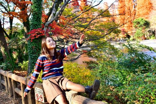 ハイキングは秋に