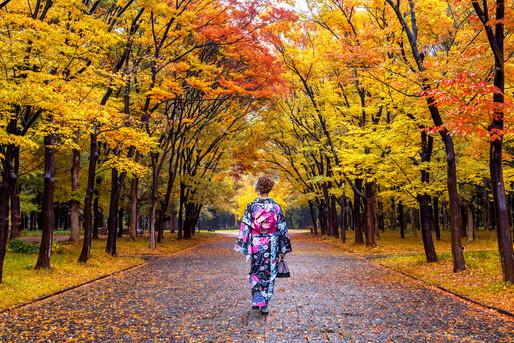 紅葉の中を歩く着物の女性