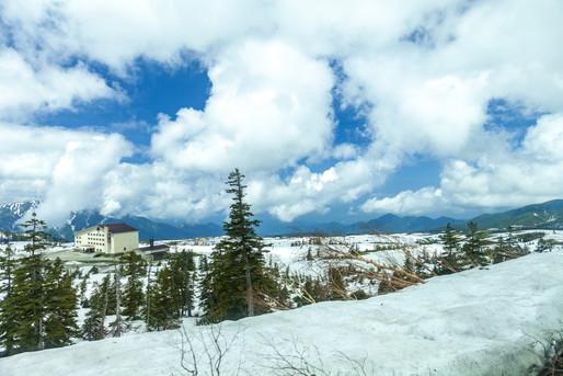 雪が積もった冬の日