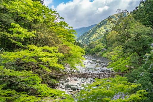 祖谷温泉の周辺地