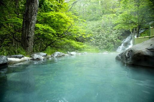 屋外の緑と温泉