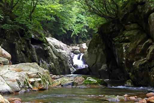 自然 滝と川