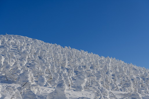 蔵王 雪景色