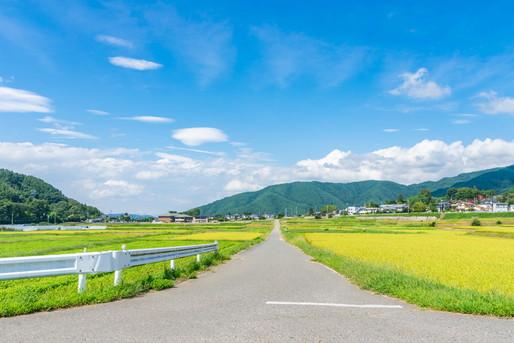 田舎へ続く道