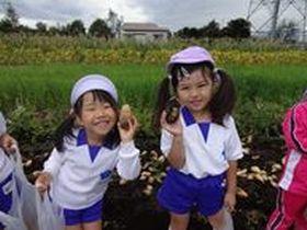 学校法人桔梗学園_ききょう幼稚園