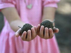 自然の中で五感を使い、自分で考え動ける子どもたちを育てる保育園です。