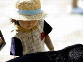 子どもの人権を守り、困難な環境にある子どもたちを支える園です。