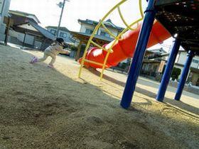 明るく元気で友達と遊び、グローバル人材の基礎を育てている保育園です。