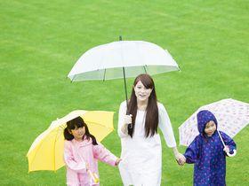 定員12名、園児の健康を保つことに努めている神戸市認可の保育園です。