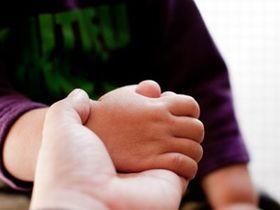 複数の施設を運営する社会福祉法人常盤会の指定障害児者施設です。