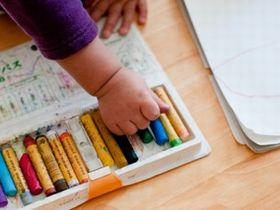 様々なカリキュラムを組み、みんなで楽しく学べるこども園です。