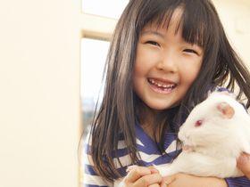 モンテッソーリ教育方針にのっとった保育を行う東京都認証保育所です。