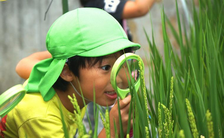 多彩な体験と異年齢保育が特徴の「共に育ちあう」保育園です