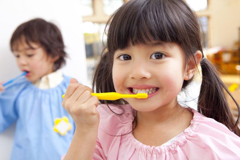 園外保育を多く取り入れて、豊かな心と身体を備えた子どもを育みます。