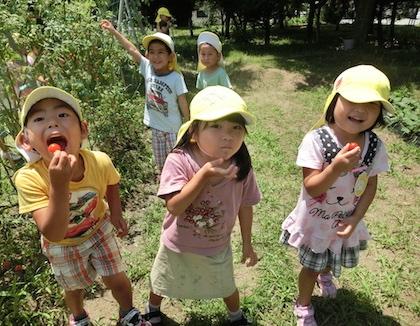 聖愛幼稚園(福岡県福津市)の様子