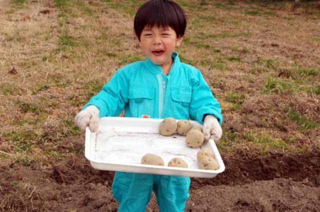 春ジャガイモを育てよう!