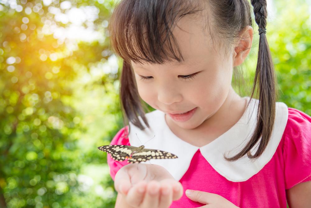 【10の姿】「自然との関わり・生命尊重」 幼児期の終わりまでに育ってほしいの姿