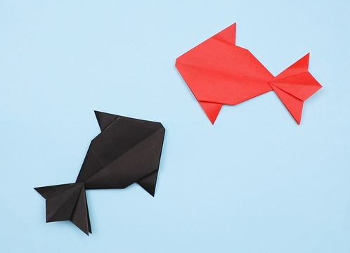 【動画】すいすい泳ぐ折り紙の金魚