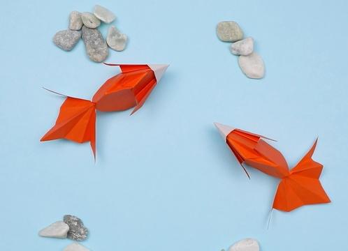 【動画】立体的な金魚の折り紙