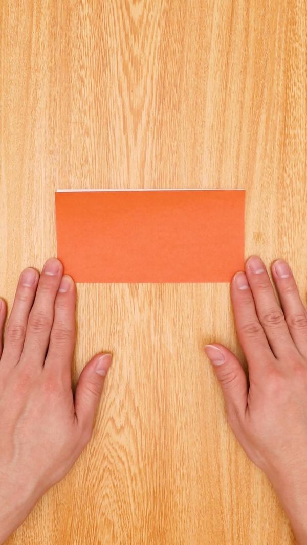 origaminewyearinoshishi003.jpg