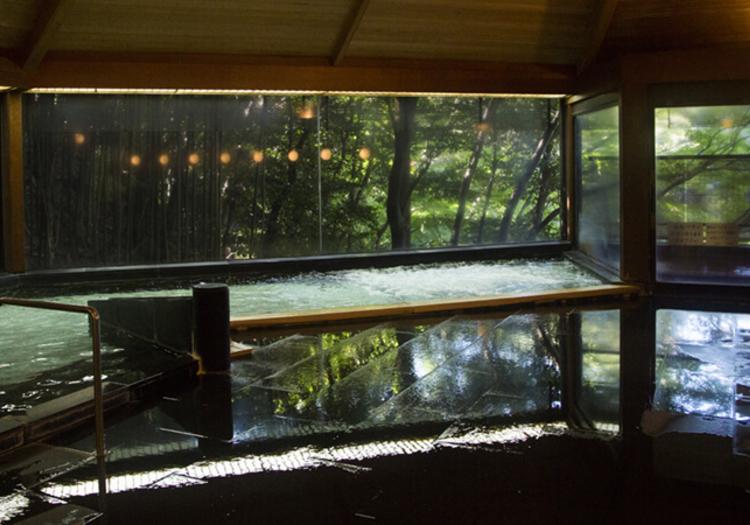 自家泉源を所有する真の元湯旅館。2つの温泉で贅沢な空間を演出します