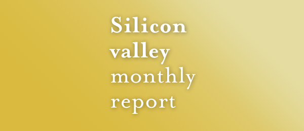 Silicon Valley Monthly Report
