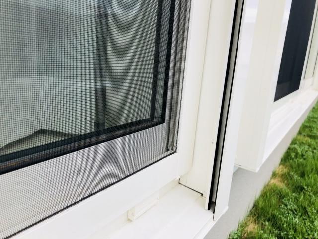 大量発生した羽アリを自宅に侵入させないための4つの予防法