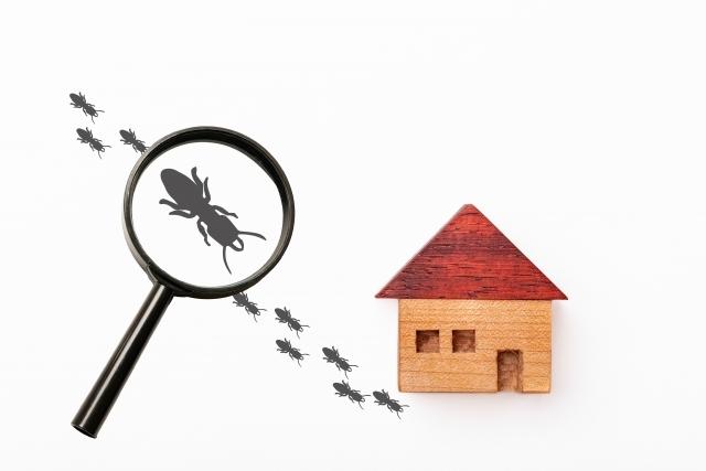 シロアリを予防する一番の方法は家に寄せ付けないこと
