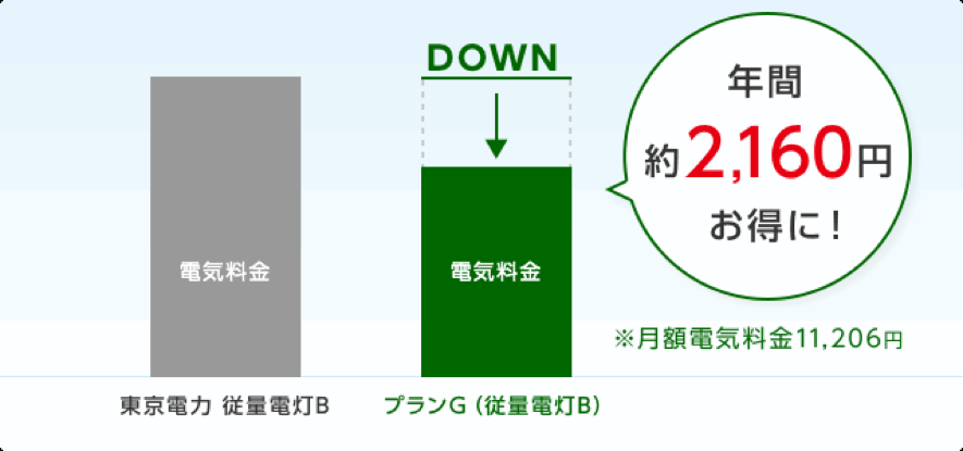 プランG(従量電灯B)