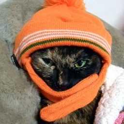 お部屋の寒さ対策が冬の電気代削減に繋がる!手軽にできる方法9選