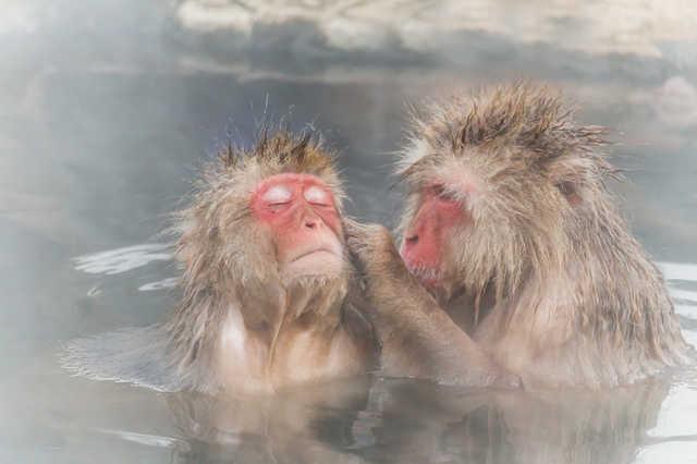 炭酸風呂の効果と効能