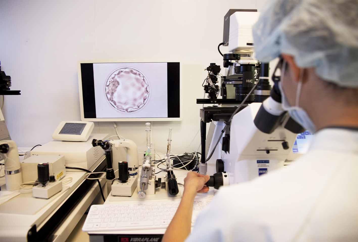 專業胚胎師