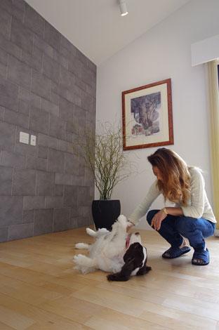 一級建築士事務所GO_AN (ゴアン)【1000万円台、デザイン住宅、ペット】エコカラットタイル壁の前で愛犬と遊ぶ建築主さん。エコカラットタイルとはペットのニオイを吸収し、湿度も調整してくれる優れもののタイル。リビングと脱衣室の壁でこのタイルを採用している