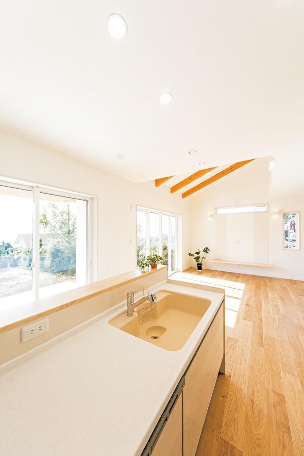 R+house沼津(HOUSE PLAN)【省エネ、夫婦で暮らす、間取り】外の景色を眺めながら料理を楽しめるキッチン。すぐ目の前の窓を開ければ、玄関横のテラススペースに出られる。家族や友人を招いてのBBQを手軽に楽しめる動線は矢吹代表が提案