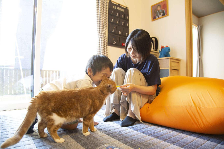 BinO清水 ブルーワン【デザイン住宅、子育て、収納力】兄弟のように育っている長男と愛猫。家族みんながのびのび暮らす生活を実現