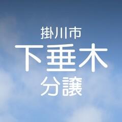【掛川市下垂木】MKホームの分譲地準備中!!