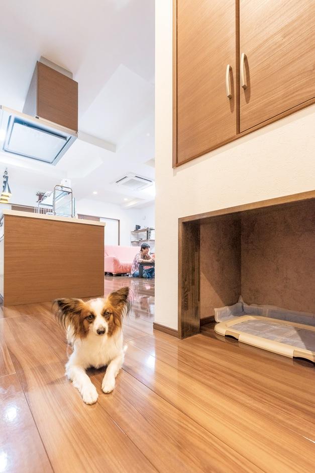 階段下を利用して、愛犬のトイレも設置