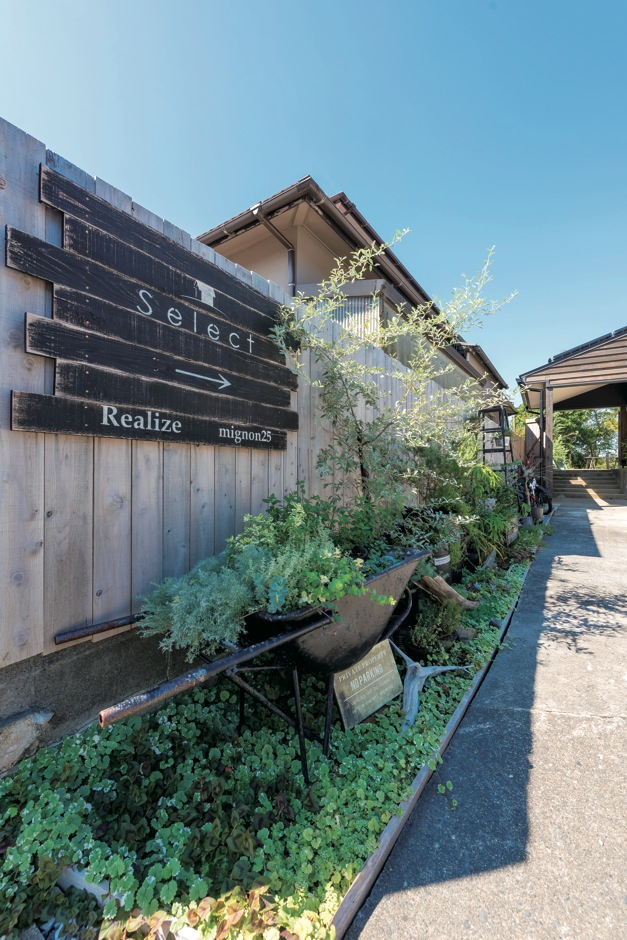Select工房【デザイン住宅、狭小住宅、スキップフロア】玄関先から庭の隅々まで、趣の違うグリーンを植え込んだ。OBの家として見学も受付中で『Select工房』 の看板もある