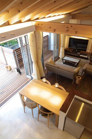 TENアーキテクツ 一級建築士事務所【二世帯住宅、ペット、建築家】カーテンボックスの上部には間接照明を。梁は猫たちの、まさにキャットウォーク