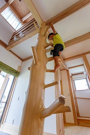 戸田工務店【子育て、自然素材、間取り】子どもたちは天竜檜の枝付き丸太をスイスイと登る。「お気に入りの遊び場なんです」と奥さま