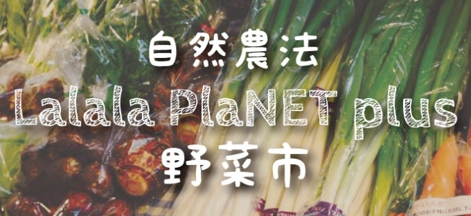 9月21日(木)は野菜市♪
