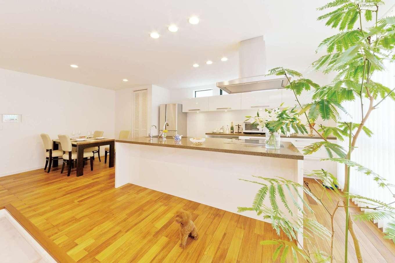 料理好き、掃除好きな奥さまの夢を形にしたカフェスタイルのアイランドキッチン。天井まで届く大きな窓から光が降り注ぐ空間で、料理タイムがより楽しくなった